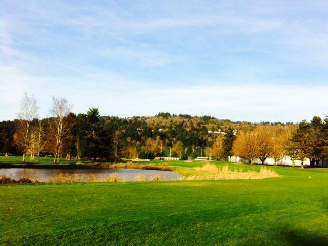 Course Photos Mint Valley Golf Course